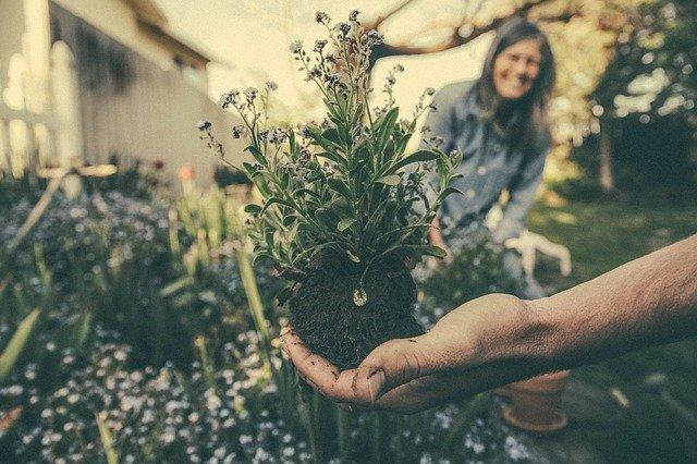 self care gardening